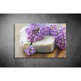 Orgona szappan Poszter 033