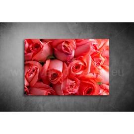 Piros Rózsák Poszter 021