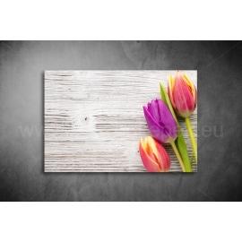 Tulipános Poszter 025