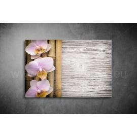 Orchidea Poszter 030