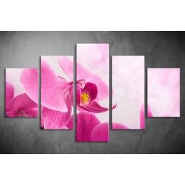 Többrészes Orchidea poszter 002 - (választható formák)