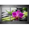 Többrészes Orchidea poszter 008 - (választható formák)