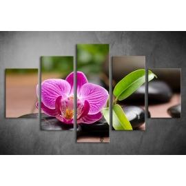 Többrészes Orchidea poszter 011 - (választható formák)