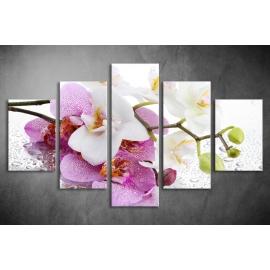 Többrészes Orchidea poszter 012 - (választható formák)