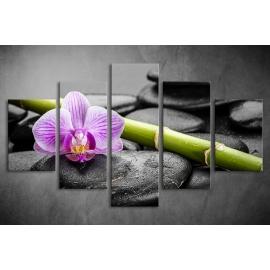 Többrészes Orchidea, Lávakövek poszter 023 - (választható formák)