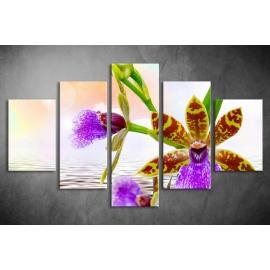Többrészes Orchidea poszter 039 - (választható formák)