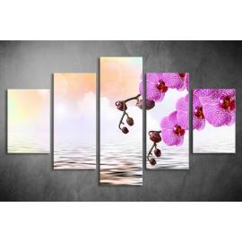 Többrészes Orchidea poszter 040 - (választható formák)