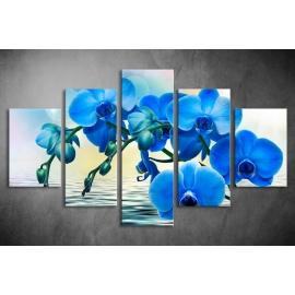 Többrészes Kék Orchidea poszter 041 - (választható formák)