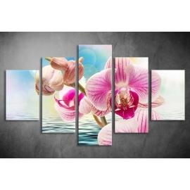 Többrészes Orchidea poszter 042 - (választható formák)