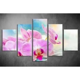 Többrészes Orchidea poszter 043 - (választható formák)