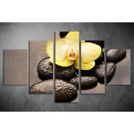 Többrészes Orchidea, Lávakövek poszter 049 - (választható formák)