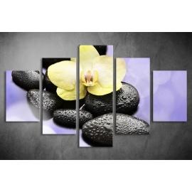Többrészes Orchidea, Lávakövek poszter 050 - (választható formák)