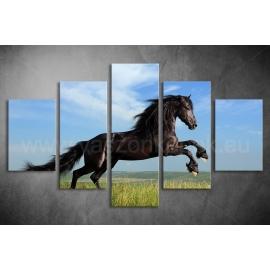 Többrészes Fekete Ló poszter 003 - (választható formák)