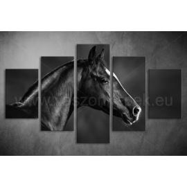 Többrészes Fekete Ló poszter 005 - (választható formák)