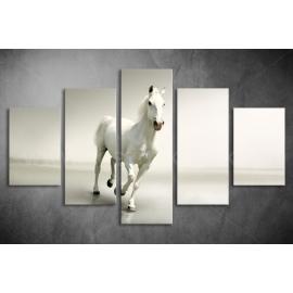 Többrészes Fehér Ló poszter 011 - (választható formák)