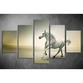 Többrészes Fehér Ló poszter 012 - (választható formák)