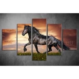 Többrészes Fekete Ló poszter 014 - (választható formák)