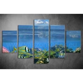 Többrészes Korallzátony poszter 046 - (választható formák)
